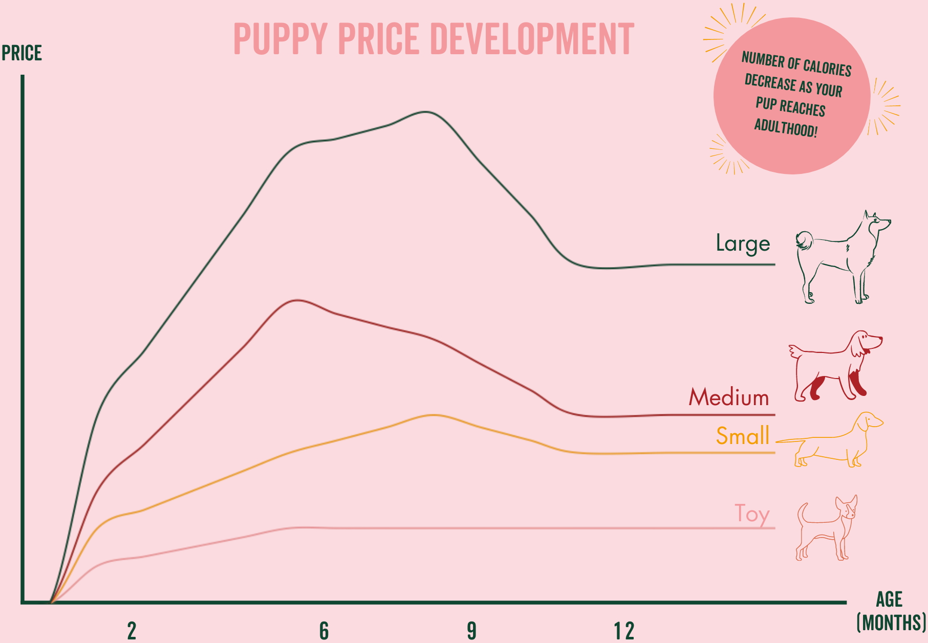 Puppy Price Development